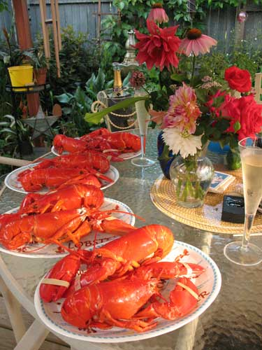 Cooked lobster with champagne