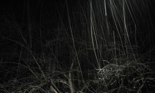 Light snow at night