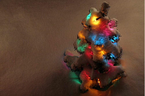 Mini tree with lights in the snow