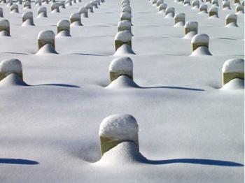 Togus Cemetery